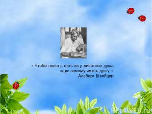 «Чтобы понять, есть ли у животных душа, надо самому иметь душу.» Альберт Швейц