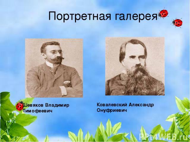 Портретная галерея Ковалевский Александр Онуфриевич Шевяков Владимир Тимофеевич