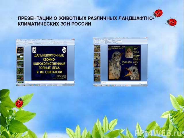ПРЕЗЕНТАЦИИ О ЖИВОТНЫХ РАЗЛИЧНЫХ ЛАНДШАФТНО-КЛИМАТИЧЕСКИХ ЗОН РОССИИ