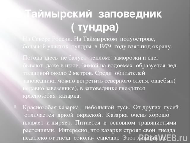 Таймырский заповедник ( тундра) На Севере России. На Таймырском полуострове, большой участок тундры в 1979 году взят под охрану. Погода здесь не балует теплом: заморозки и снег бывают даже в июле. Зимой на водоемах образуется лед толщиной около 2 ме…