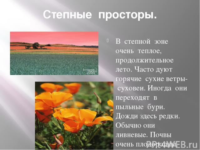 Степные просторы. В степной зоне очень теплое, продолжительное лето. Часто дуют горячие сухие ветры- суховеи. Иногда они переходят в пыльные бури. Дожди здесь редки. Обычно они ливневые. Почвы очень плодородны. Здесь растут тюльпаны, ирисы- цветут в…
