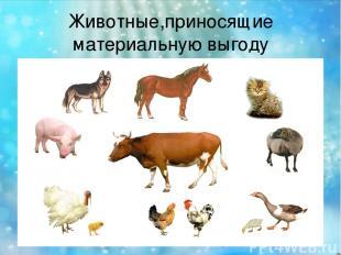Животные,приносящие материальную выгоду
