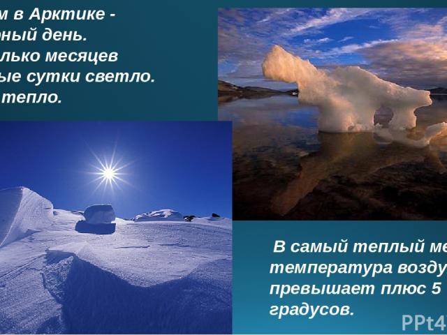 Летом в Арктике - полярный день. Несколько месяцев круглые сутки светло. Но не тепло. В самый теплый месяц температура воздуха не превышает плюс 5 градусов.