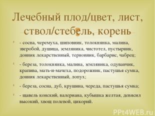 - сосна, черемуха, шиповник, толокнянка, малина, зверобой, душица, земляника, чи