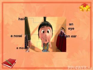hair a nose a mouth an eye an ear
