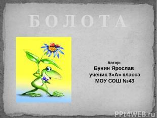 Б О Л О Т А Автор: Бунин Ярослав ученик 3«А» класса МОУ СОШ №43 МОУ «Лицей № 121