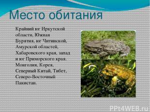 Место обитания Крайний юг Иркутской области, Южная Бурятия, юг Читинской, Амурск