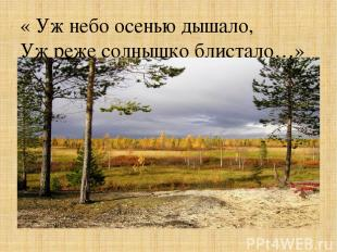 « Уж небо осенью дышало, Уж реже солнышко блистало…»