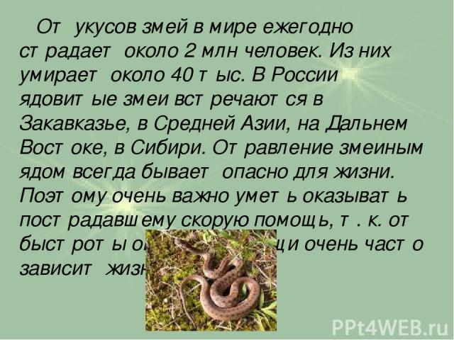 От укусов змей в мире ежегодно страдает около 2 млн человек. Из них умирает около 40 тыс. В России ядовитые змеи встречаются в Закавказье, в Средней Азии, на Дальнем Востоке, в Сибири. Отравление змеиным ядом всегда бывает опасно для жизни. Поэтому …