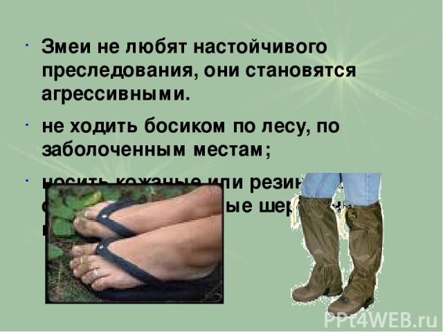 Змеи не любят настойчивого преследования, они становятся агрессивными. не ходить босиком по лесу, по заболоченным местам; носить кожаные или резиновые сапоги либо плотные шерстяные носки;