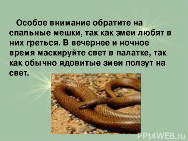 Особое внимание обратите на спальные мешки, так как змеи любят в них греться. В вечернее и ночное время маскируйте свет в палатке, так как обычно ядовитые змеи ползут на свет.
