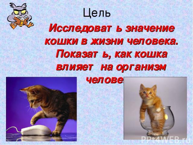 Цель Исследовать значение кошки в жизни человека. Показать, как кошка влияет на организм человека. *