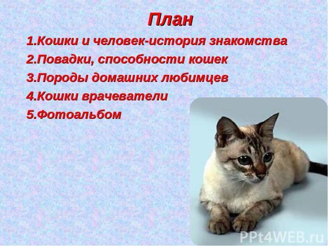 План Кошки и человек-история знакомства Повадки, способности кошек Породы домашних любимцев Кошки врачеватели Фотоальбом