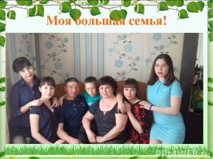 Моя большая семья!