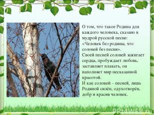 О том, что такое Родина для каждого человека, сказано в мудрой русской песне: «Ч