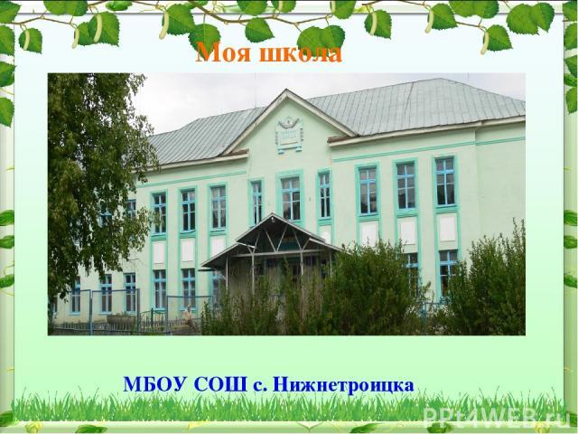 Моя школа МБОУ СОШ с. Нижнетроицка