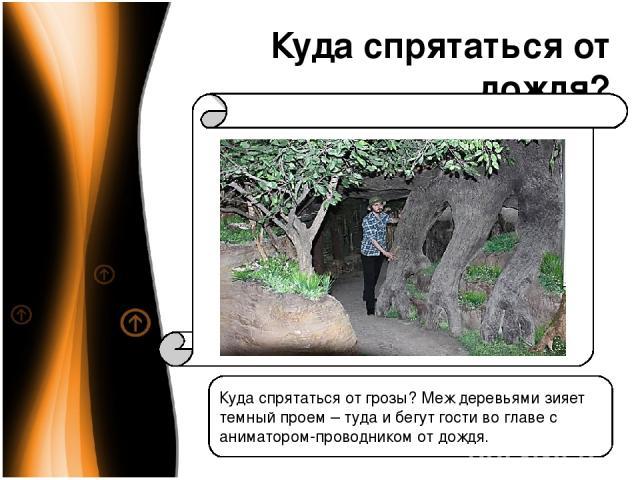 Куда спрятаться от дождя? Куда спрятаться от грозы? Меж деревьями зияет темный проем – туда и бегут гости во главе с аниматором-проводником от дождя.