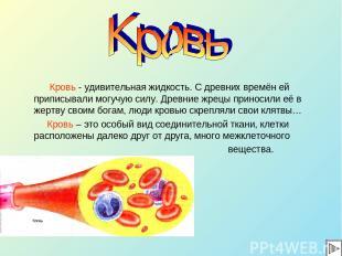 Кровь - удивительная жидкость. С древних времён ей приписывали могучую силу. Дре