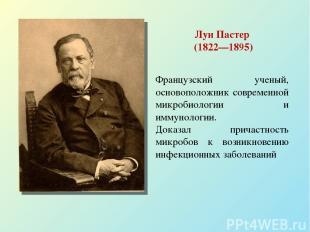Луи Пастер (1822—1895) Французский ученый, основоположник современной микробиоло