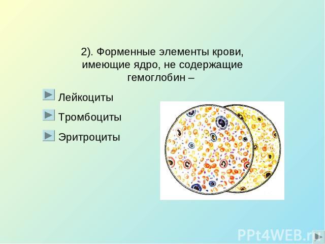 2). Форменные элементы крови, имеющие ядро, не содержащие гемоглобин – Лейкоциты Тромбоциты Эритроциты