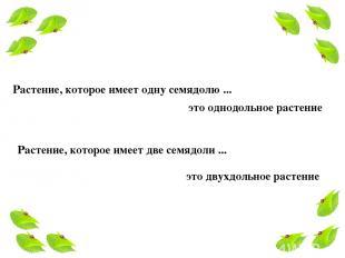Растение, которое имеет одну семядолю ... это однодольное растение Растение, кот