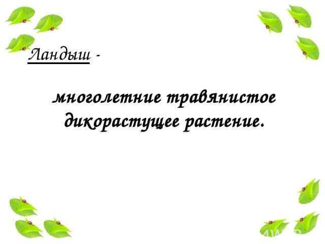 Ландыш - многолетние травянистое дикорастущее растение.