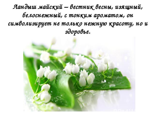 Ландыш майский – вестник весны, изящный, белоснежный, с тонким ароматом, он символизирует не только нежную красоту, но и здоровье.