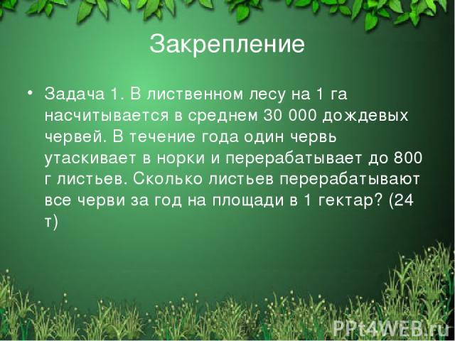 Закрепление Задача 1. В лиственном лесу на 1 га насчитывается в среднем 30 000 дождевых червей. В течение года один червь утаскивает в норки и перерабатывает до 800 г листьев. Сколько листьев перерабатывают все черви за год на площади в 1 гектар? (2…