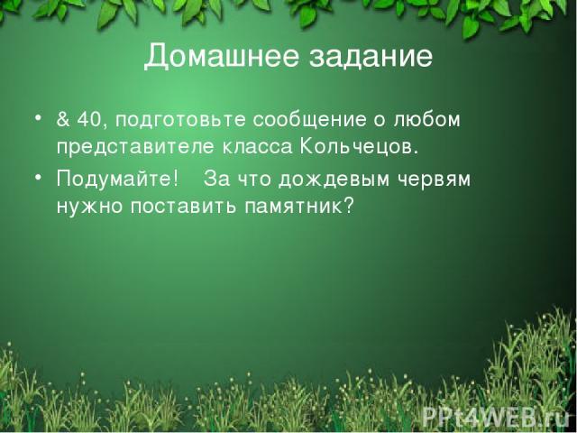 Домашнее задание & 40, подготовьте сообщение о любом представителе класса Кольчецов. Подумайте! За что дождевым червям нужно поставить памятник? Free template from www.brainybetty.com