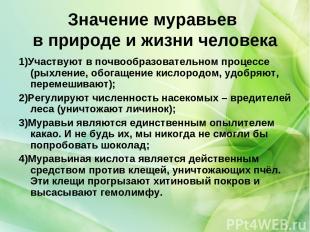 Значение муравьев в природе и жизни человека 1)Участвуют в почвообразовательном