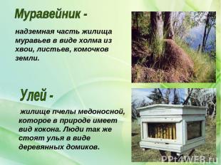 жилище пчелы медоносной, которое в природе имеет вид кокона. Люди так же стоят у