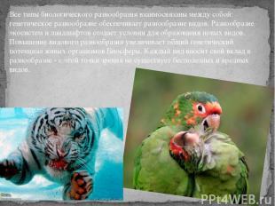 Все типы биологического разнообразиявзаимосвязаны между собой: генетическое раз