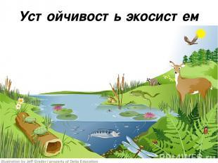 Устойчивость экосистем