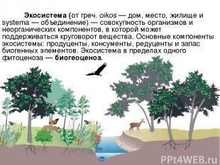 Экосистема (от греч. oikos — дом, место, жилище и systema — объединение) — совок