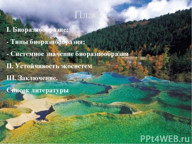 I. Биоразнообразие: - Типы биоразнообразия; - Системное значение биоразнообразия II. Устойчивость экосистем III. Заключение. Список литературы План