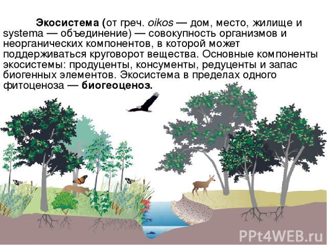 Экосистема (от греч. oikos — дом, место, жилище и systema — объединение) — совокупность организмов и неорганических компонентов, в которой может поддерживаться круговорот вещества. Основные компоненты экосистемы: продуценты, консументы, редуценты и …