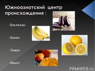 * Баклажан Банан Лимон Манго Костюк Алёна 11-Б класс