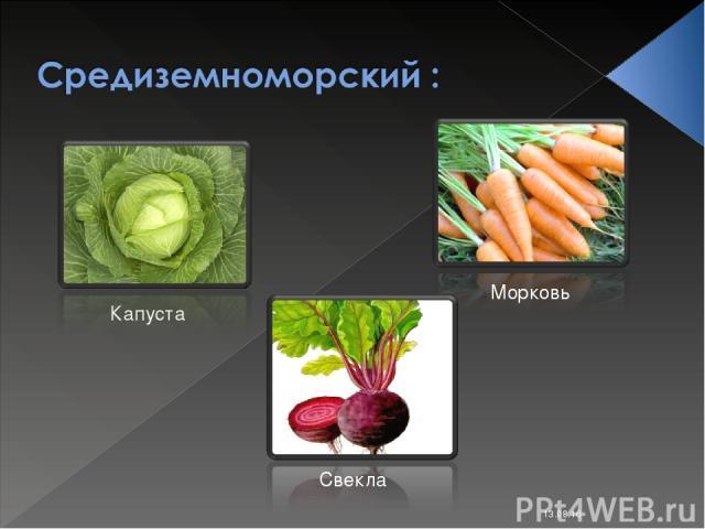 * Капуста Морковь Свекла Костюк Алёна 11-Б класс