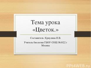 Тема урока «Цветок.» Составитель :Криулина И.В. Учитель биологии ГБОУ СОШ №1022