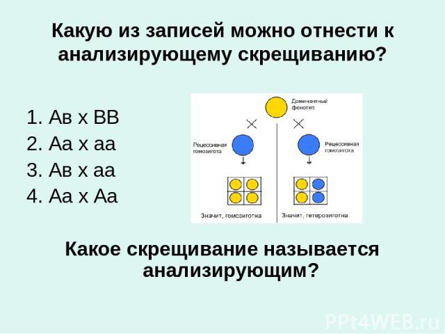 Какую из записей можно отнести к анализирующему скрещиванию? 1. Ав х ВВ 2. Аа х аа 3. Ав х аа 4. Аа х Аа Какое скрещивание называется анализирующим?