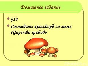 Домашнее задание §14 Составить кроссворд по теме «Царство грибов»