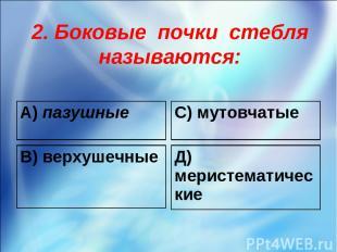 2. Боковые почки стебля называются: А) пазушные С) мутовчатые В) верхушечные Д)