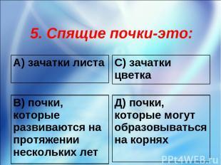 5. Спящие почки-это: А) зачатки листа С) зачатки цветка В) почки, которые развив