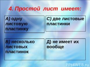 4. Простой лист имеет: А) одну листовую пластинку С) две листовые пластинки В) н
