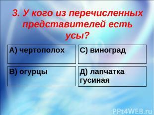 3. У кого из перечисленных представителей есть усы? А) чертополох С) виноград В)