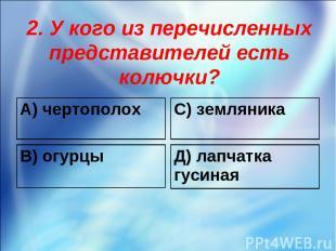 2. У кого из перечисленных представителей есть колючки? А) чертополох С) земляни