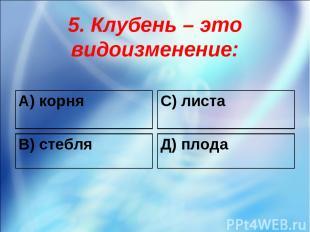 5. Клубень – это видоизменение: А) корня С) листа В) стебля Д) плода