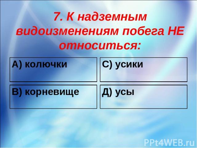 7. К надземным видоизменениям побега НЕ относиться: А) колючки С) усики В) корневище Д) усы