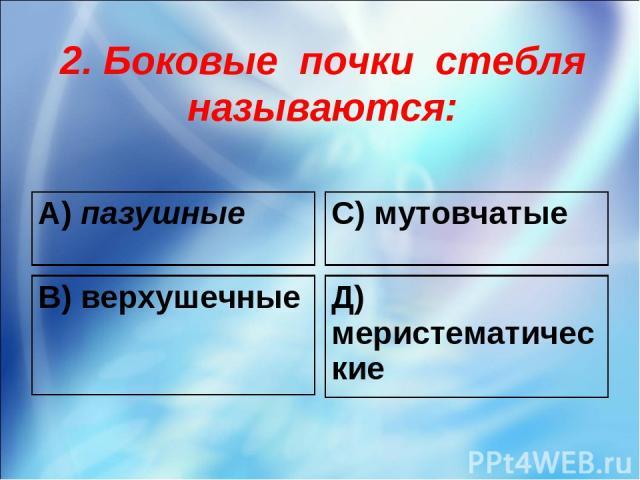 2. Боковые почки стебля называются: А) пазушные С) мутовчатые В) верхушечные Д) меристематические