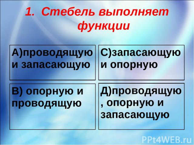 Стебель выполняет функции А)проводящую и запасающую С)запасающую и опорную В) опорную и проводящую Д)проводящую, опорную и запасающую